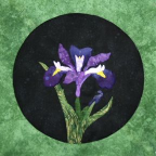 Wildly Dutch Iris Applique Patern