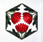06 Crysanthemum Applique Pattern