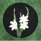 Nearly Narcissus Applique Patern